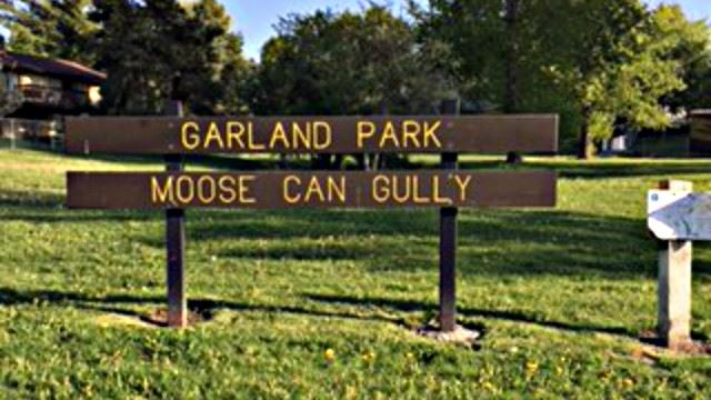 Garland Park Moose Can  Gully